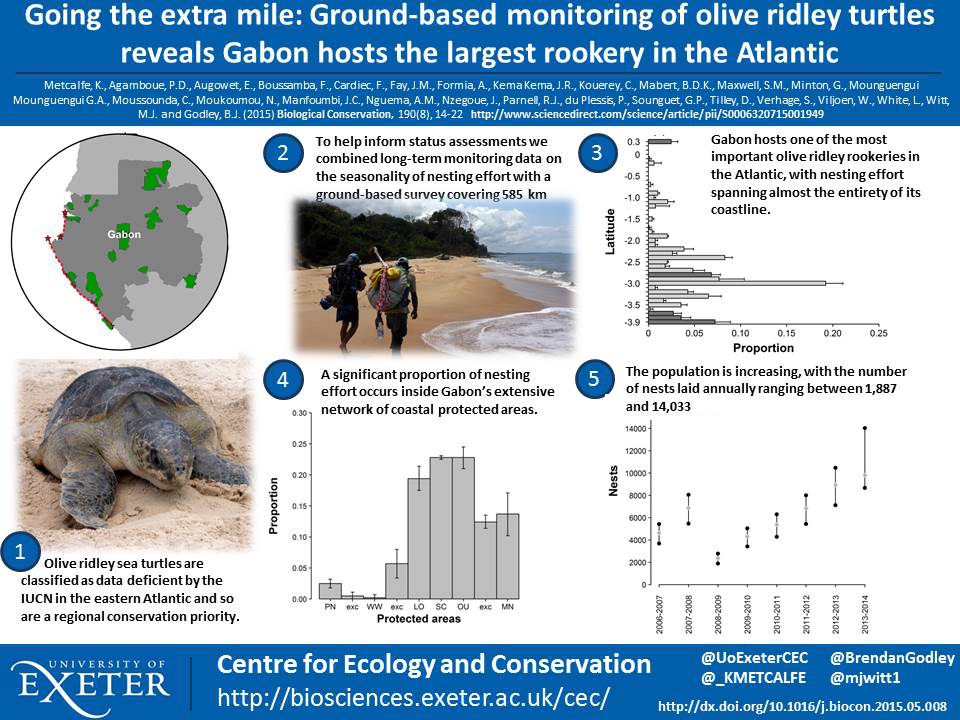 Tweetable Science Poster Of Olive Ridley Research